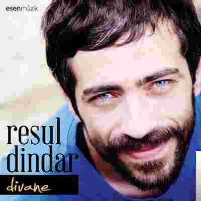 Divane (2013) albüm kapak resmi