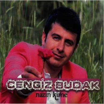 Nazın Kime (2013) albüm kapak resmi