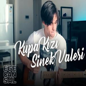 Kupa Kızı Sinek Valesi (2020) albüm kapak resmi