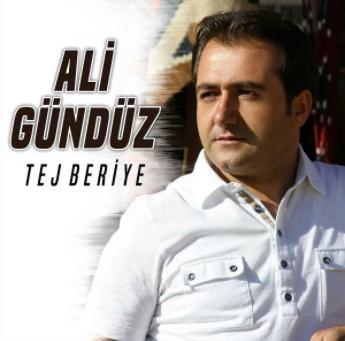 Tej Beriye (2019) albüm kapak resmi