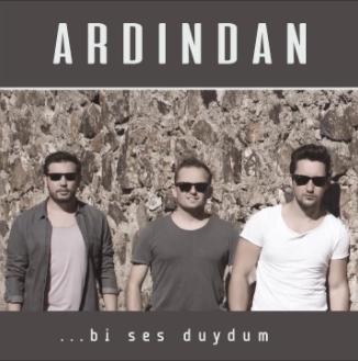 Bi Ses Duydum (2017) albüm kapak resmi