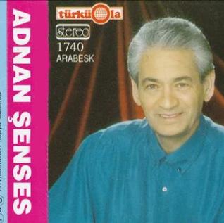 Senin Olmaya Geldim (1995) albüm kapak resmi