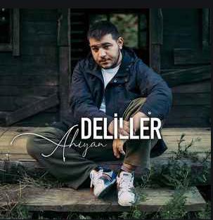 Deliller (2021) albüm kapak resmi