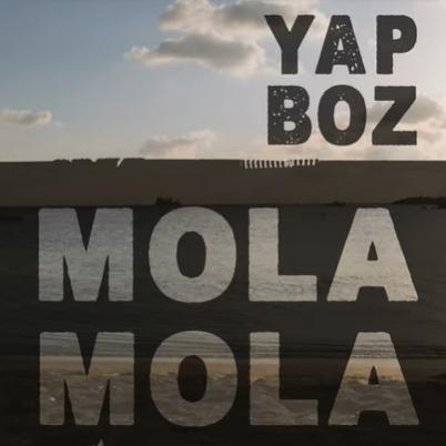 Mola Mola Yapboz (2021)