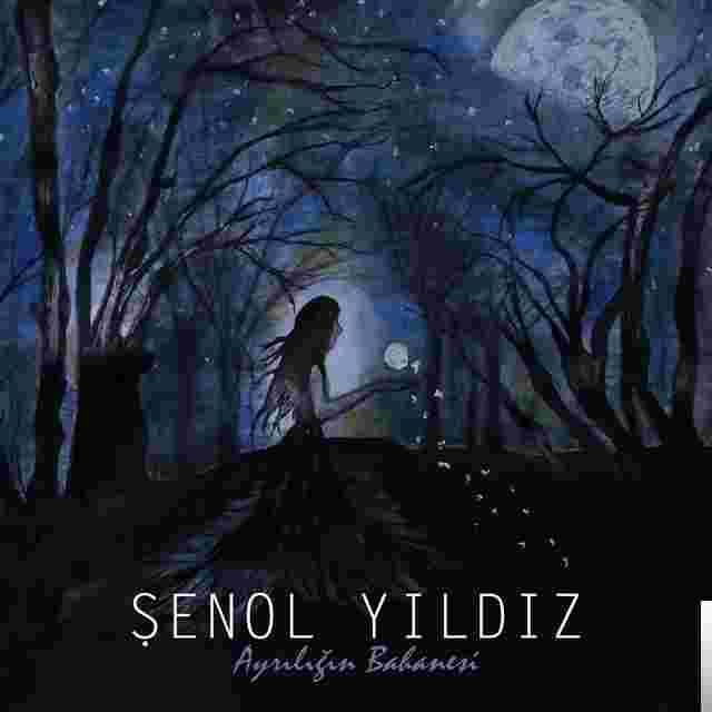 Şenol Yıldız Bir Damla Aşk (2019)