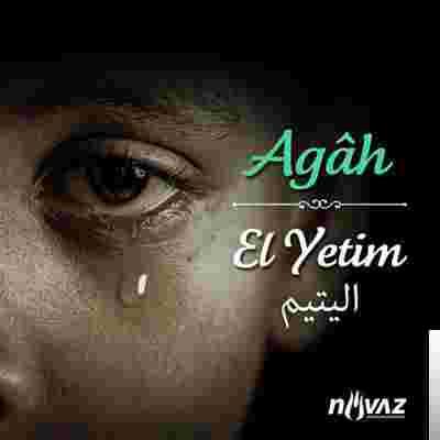 El Yetim (2012) albüm kapak resmi
