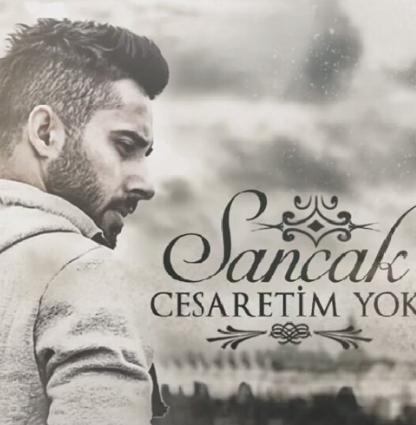 Cesaretim Yok (2014) albüm kapak resmi
