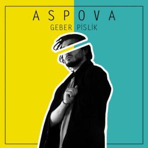 Geber Pislik (2018) albüm kapak resmi