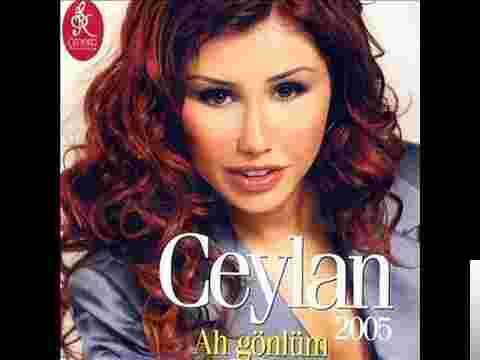 Ah Gönlüm (2005) albüm kapak resmi
