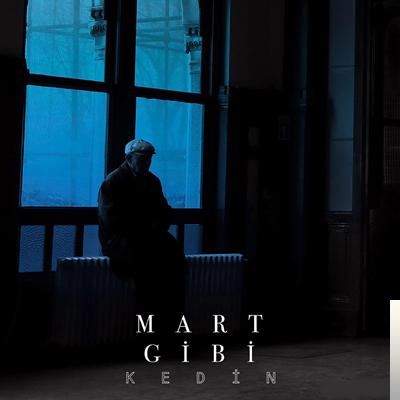 Kedin (2020) albüm kapak resmi