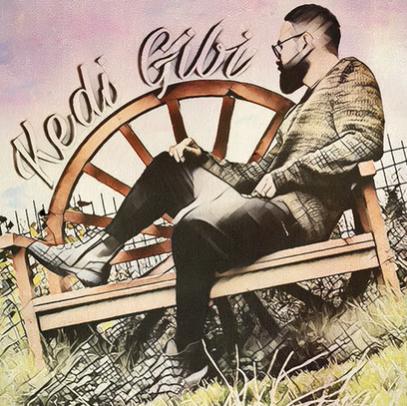 Kedi Gibi (2020) albüm kapak resmi