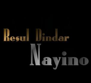 Nayino (2010) albüm kapak resmi