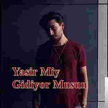 Gidiyor Musun (2019) albüm kapak resmi