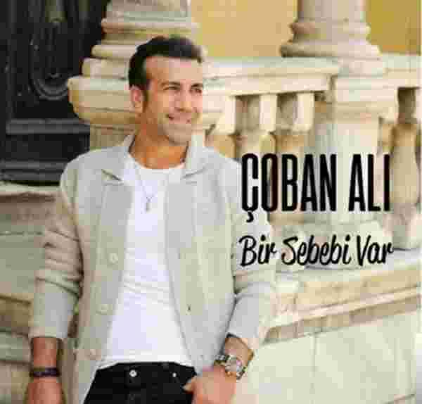 Bir Sebebi Var (2017) albüm kapak resmi