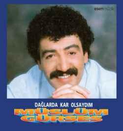 Dağlarda Kar Olsaydım (1993) albüm kapak resmi