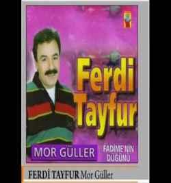 Mor Güller (1994) albüm kapak resmi