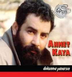 Dokunma Yanarsın (1992) albüm kapak resmi